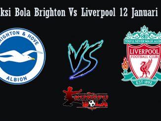 Prediksi Bola Brighton Vs Liverpool 12 Januari 2019